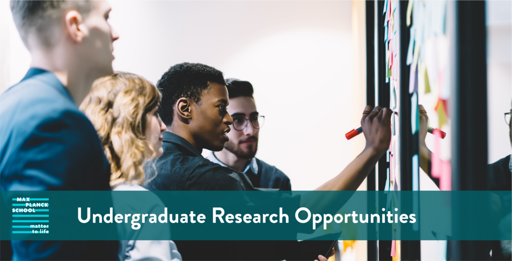 Matter to Life Undergraduate Research Opportunities (MtL-URO)