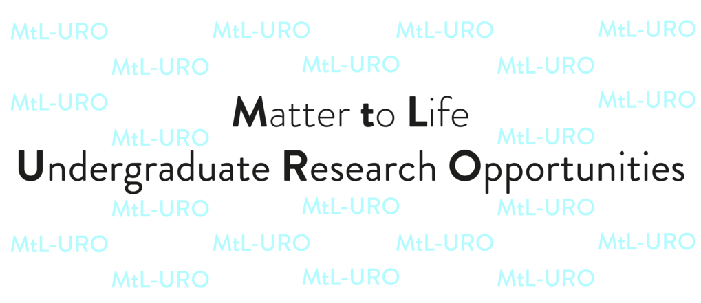 Matter to Life UndergraduateResearch Opportunities (MtL-URO)