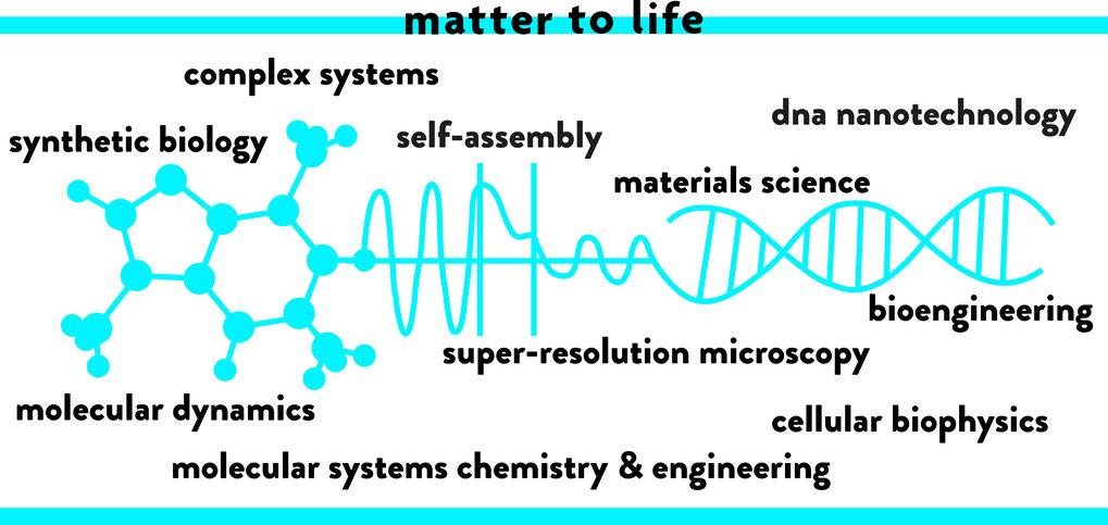 Programm - Max Planck School Matter to Life